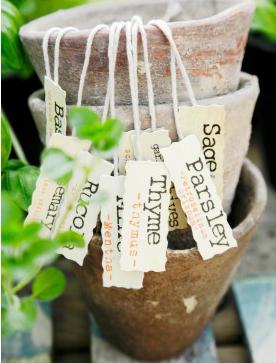 Marycot marcadores para plantas - Etiquetas para plantas ...