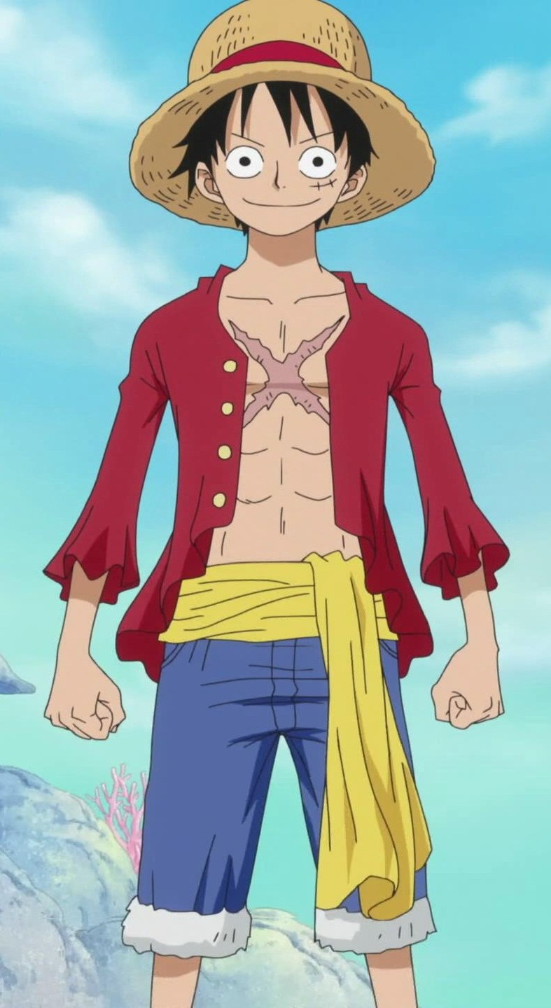 Early Monkey D Luffy One Piece - STORY OF MONKEY D LUFFY