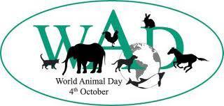 October 4 -World Animal Welfare Day