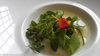 whey-fresh-curds-caraway-gnocchi-Eleven-Madison-Park-Stella-Dacuma-Schour-food-photography