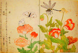 "UTAMARO: ""Butterfly and Dragonfly"" (1788)"