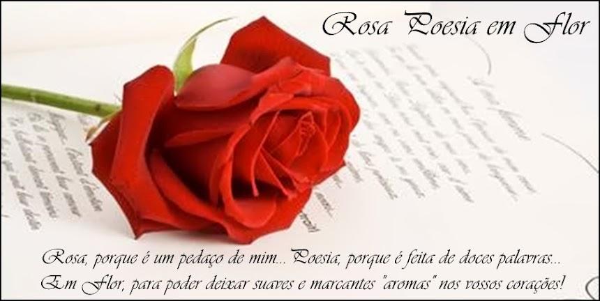 Rosa Poesia em Flor