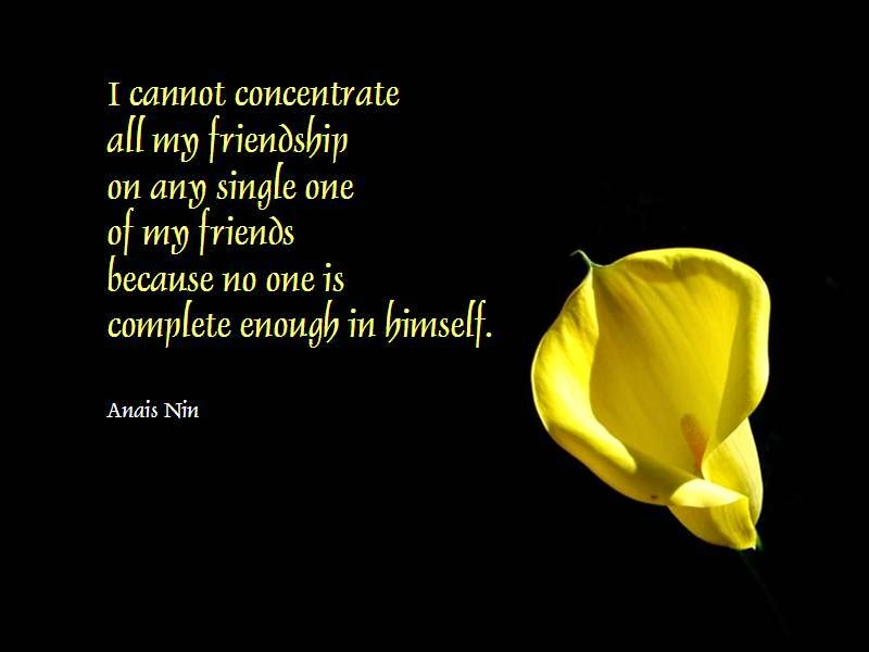 Quotes And Musings: Friendship Quote | Dedication To A Friend