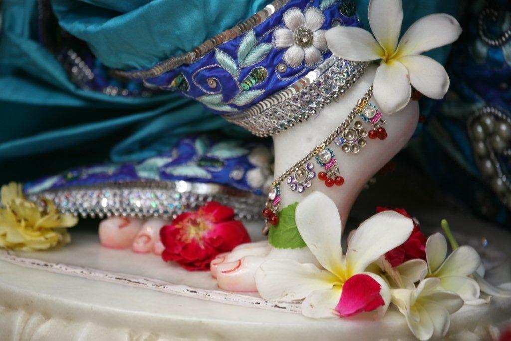 Lotus Feet of Sri Vrindavana Chandra