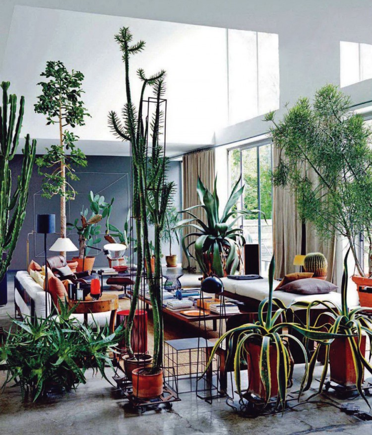 Living room urban jungle furniplan furniture planning for Jungle living room ideas