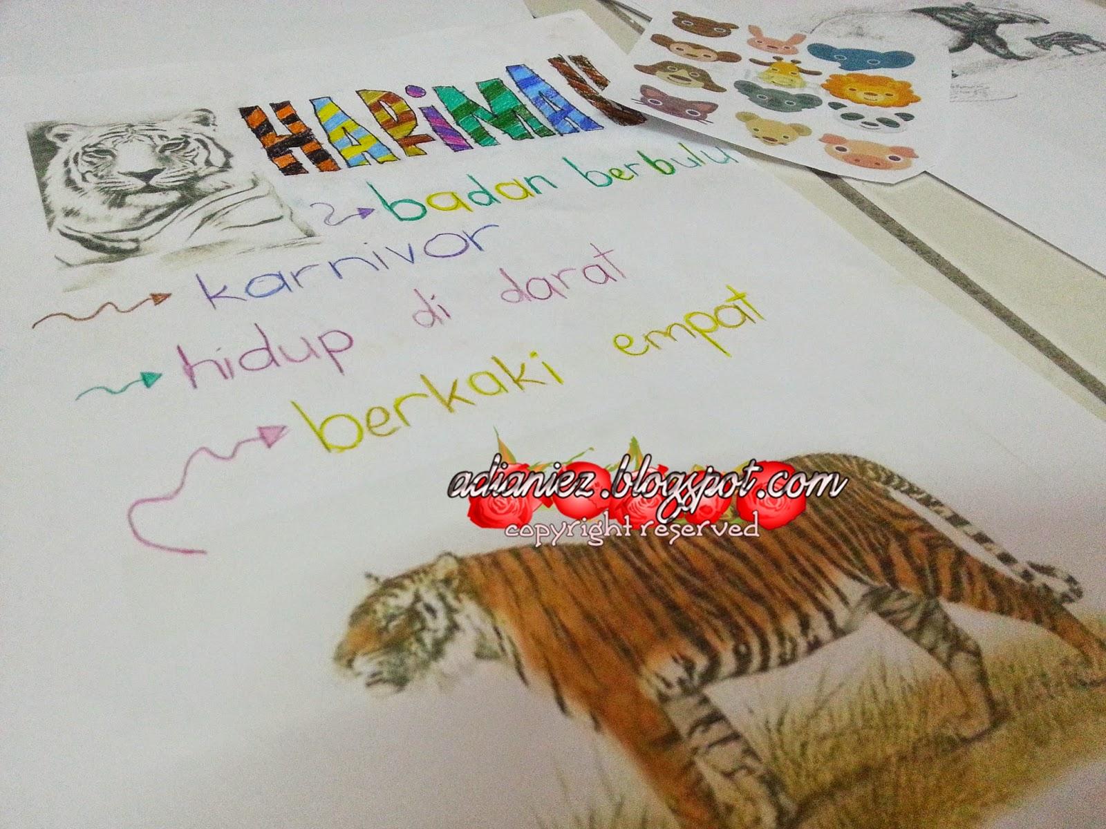 gambar kartun haiwan - gambar hewan