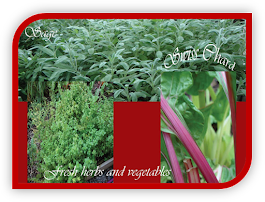 Herbs and Culinary Seasonings