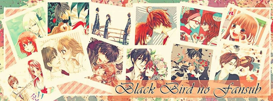 Black Bird no Fansub