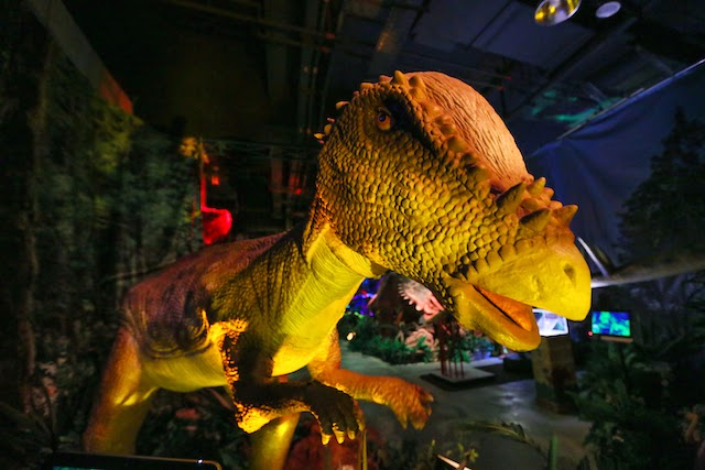 One of the exhibits at Dinoscovery by Dinosaurs Live!