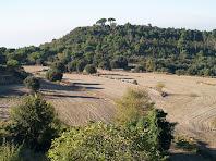 Camps del Soler de Bertí