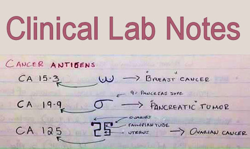 sci labs notes The top 10 rules of science lab safety: this video outlines 10 major categories of safety concerns in a high school science lab enjoy.