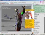 3D Virtual Human Anatomy Studio