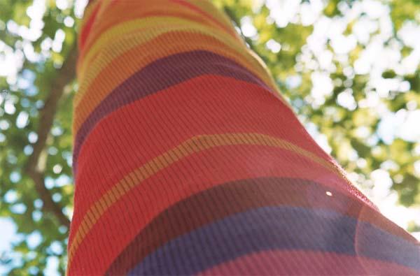 Suzanne Tidwell árboles tejidos