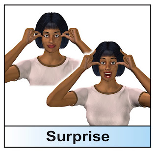 sign language surprise