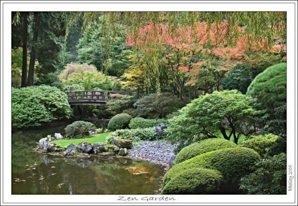 Learning Life Zen Garden