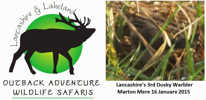 Lancashire and Lakeland Outback Adventure Wildlife Safaris