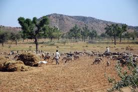 இந்தியாவின் ராஜபாட்டையால் யாருக்கு லாபம்?  Dry+land