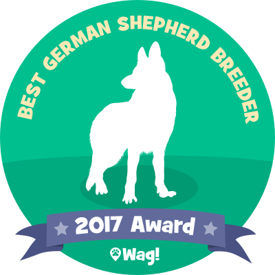Best German Shepherd Breeder Award