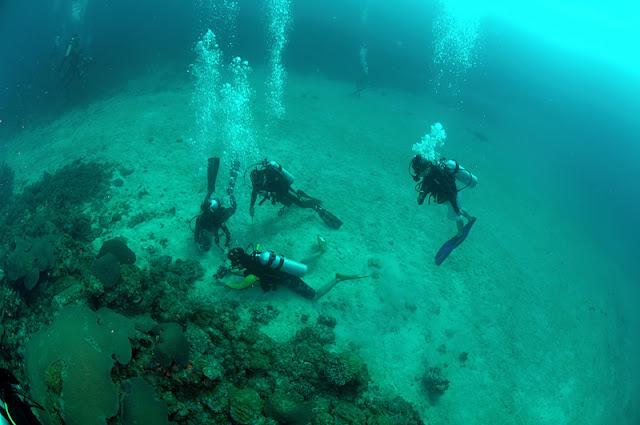 Diving Photos Mantanani