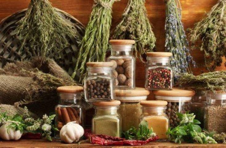 травы снижающие холестерин в крови