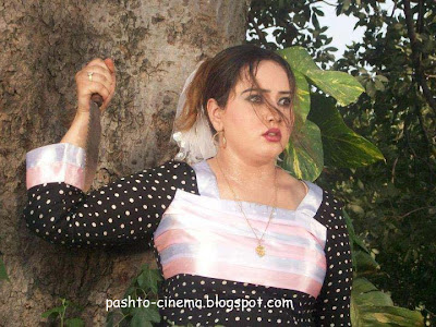 Pashto Cd's Actress