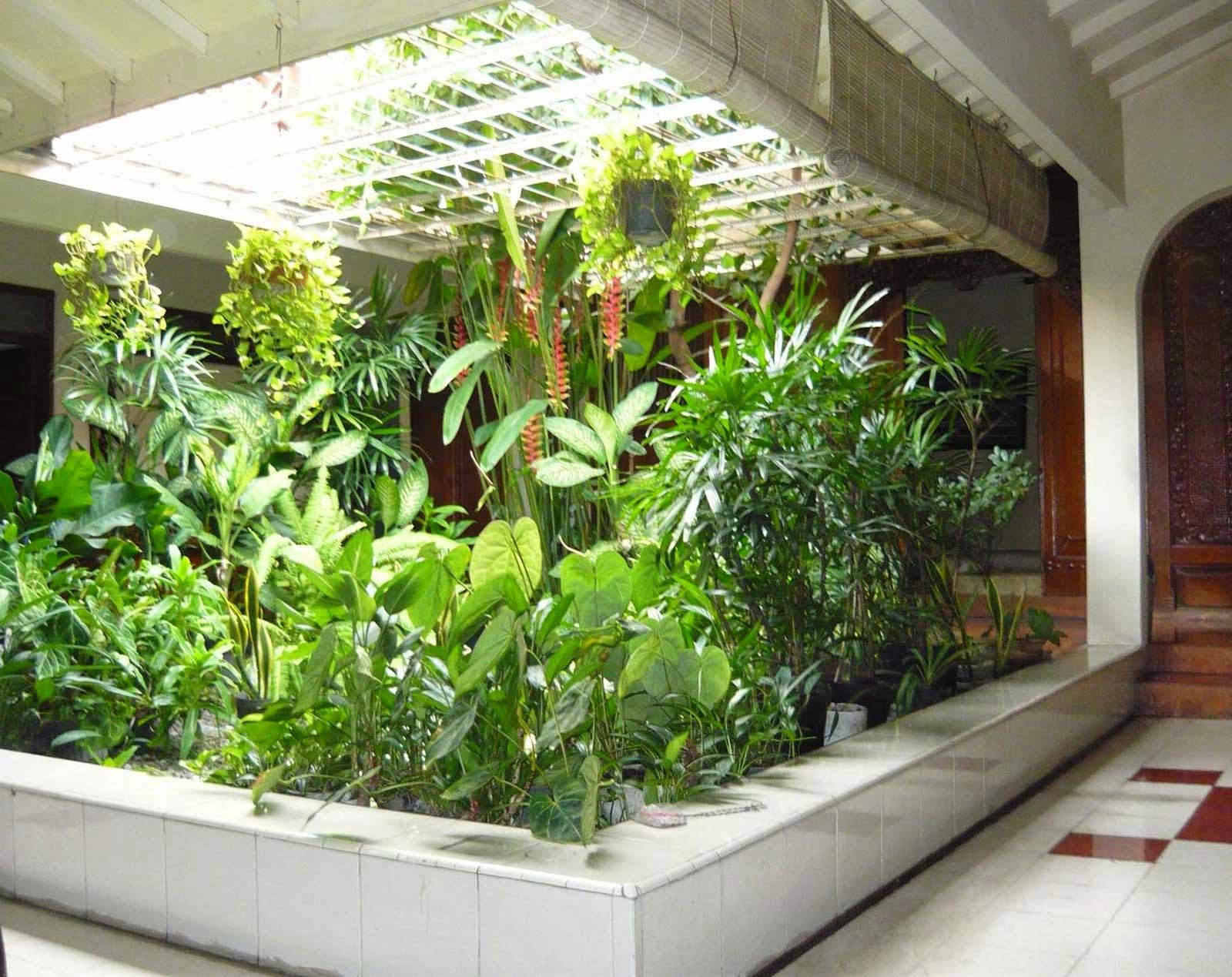 Garden-In-Home-Design-Garden-House-Minimalist