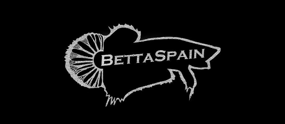 BettaSpain