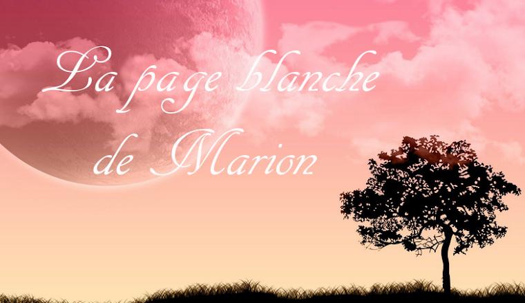 La page blanche de Marion