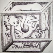 La Caja de Schrödi