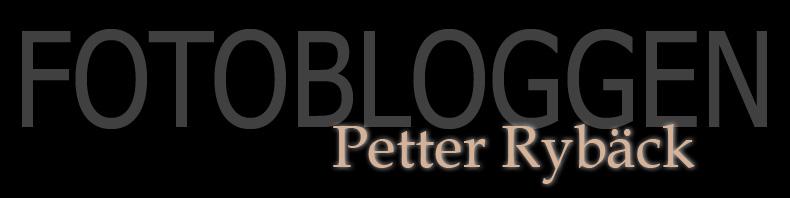 Petter Rybäck:s Fotoblogg