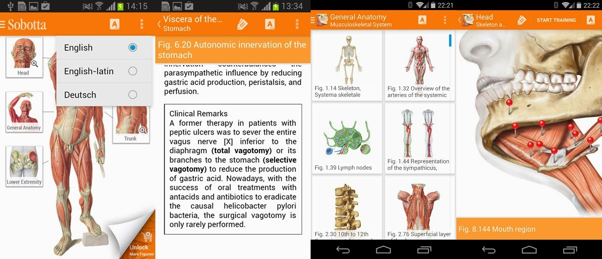 Sobotta anatomy atlas free download 3104676 - follow4more.info