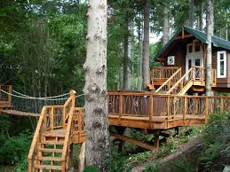 Buying Tree House Plans   Woodworking PlansBuying Tree House Plans