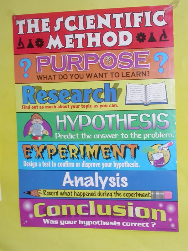 the scientific method 2 essay Essay history of the scientific method 685 words | 3 pages scientific method is the way scientists learn and study the world around them it is the process by which scientists work over a period of time to construct an accurate (ie reliable, consistent and non-arbitrary) representation of the world.