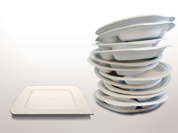 Plate-oh Disposable Paper Plates Seen On www.coolpicturegallery.us