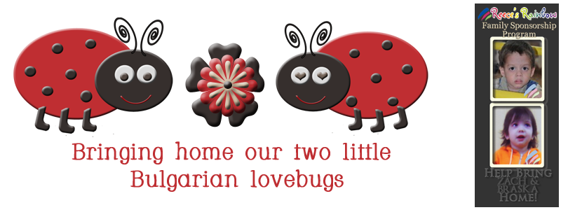 Bringing Home Our Two Little Bulgarian Lovebugs **TRIP TWO**