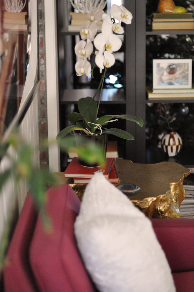 white orchids, decor details