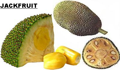 Jackfruit: Health Benefits and Nutrition Info