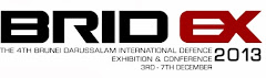BRIDEX 2013