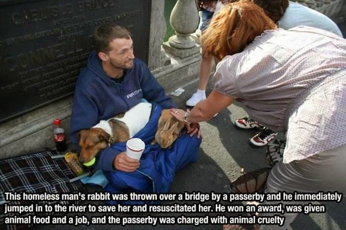 People doing amazing things for animals (28 pics), homeless man rescued a rabbit thrown over a bridge by a passerby