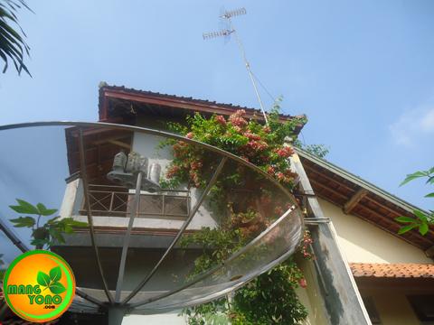Antena Parabola Vs Antena UHF