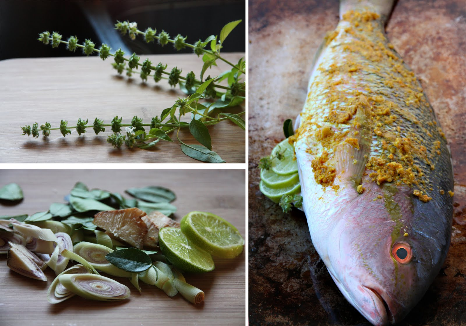 Turmeric roasted fish shesimmers for Fresh fish recipes