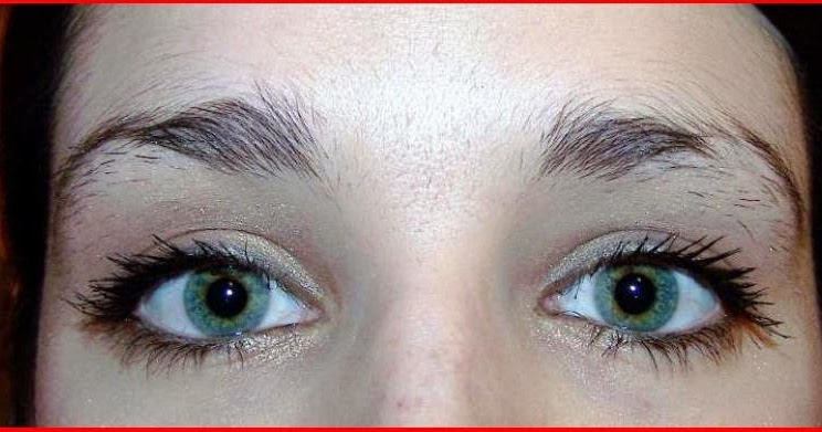 how to grow out eyebrows thicker