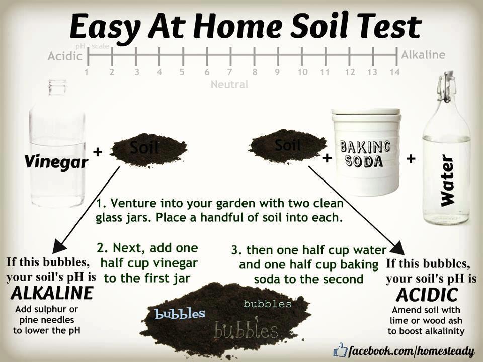 Soil test for Soil encyclopedia