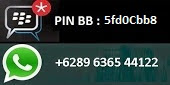 My pin BB and Whatsapp