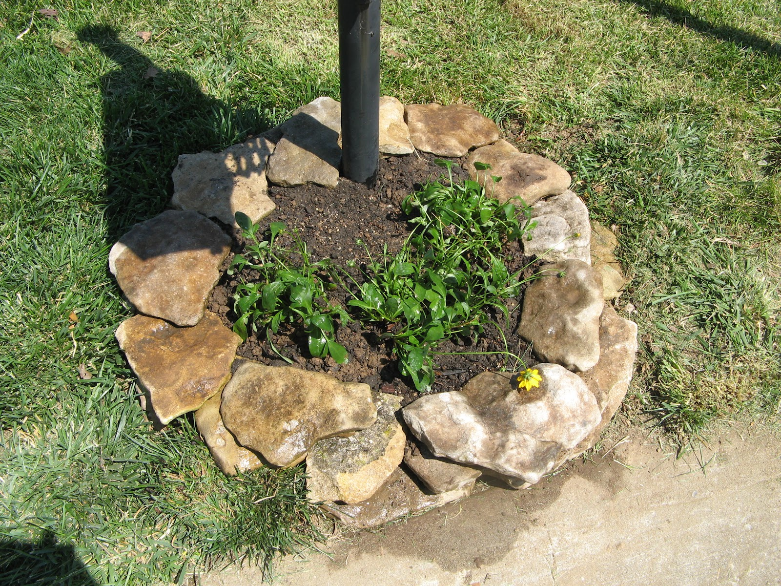 Mailbox ideas on pinterest country mailbox mail boxes for Curbside garden designs