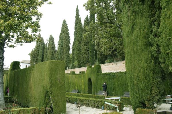Generalife 11 paseo de los cipreses - Residencia los jardines granada ...