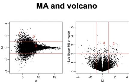 One Tip Per Day: T-test vs  Wilcox-test, MA-plot vs  volcano plot