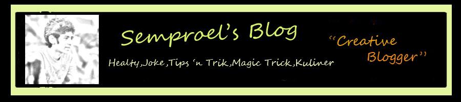 Semproel Blog