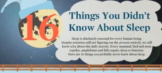 Info - 16 Perkara Tentang Tidur