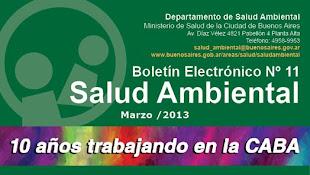 Boletín 10 años de Salud Ambiental Marzo 2013